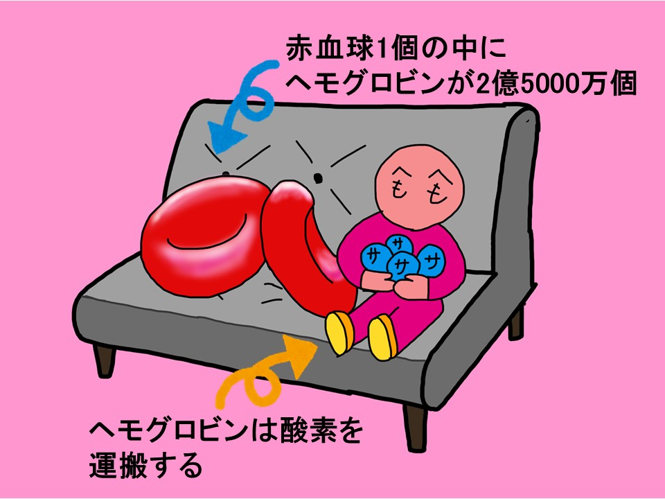 f:id:ya-sone:20200308145140j:plain