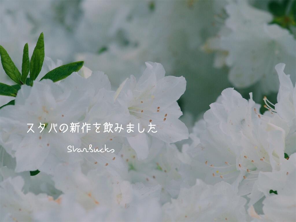 f:id:ya_mai_8:20190516191607j:image