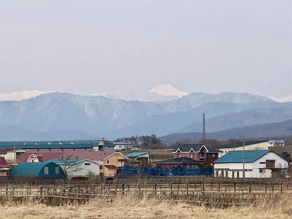 f:id:yaaninju-yui35:20190401213540j:image
