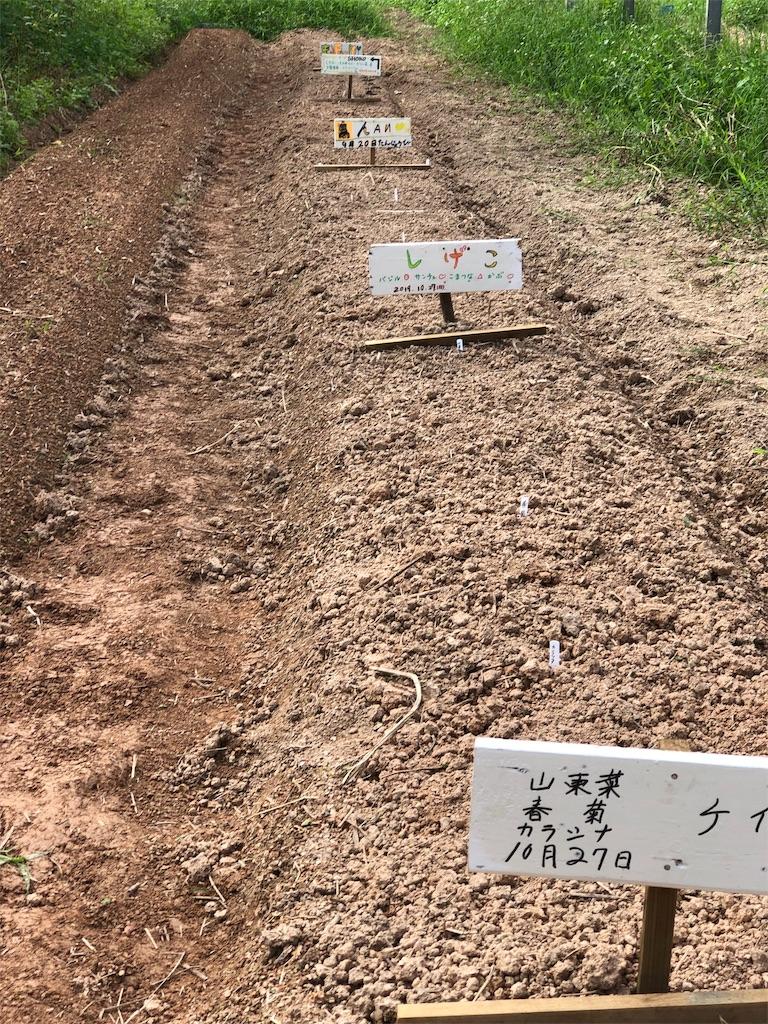 f:id:yaaninju-yui35:20191028233601j:image