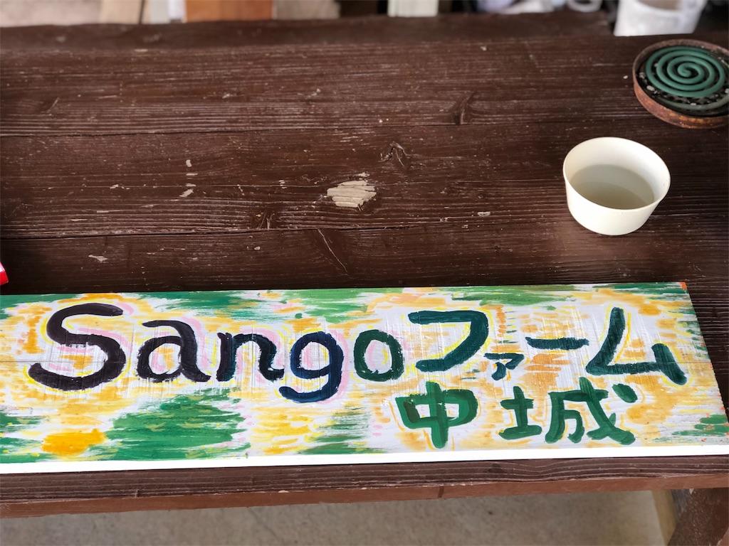 f:id:yaaninju-yui35:20191109190504j:image