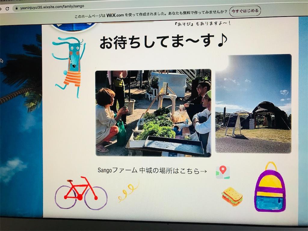 f:id:yaaninju-yui35:20200309200739j:image