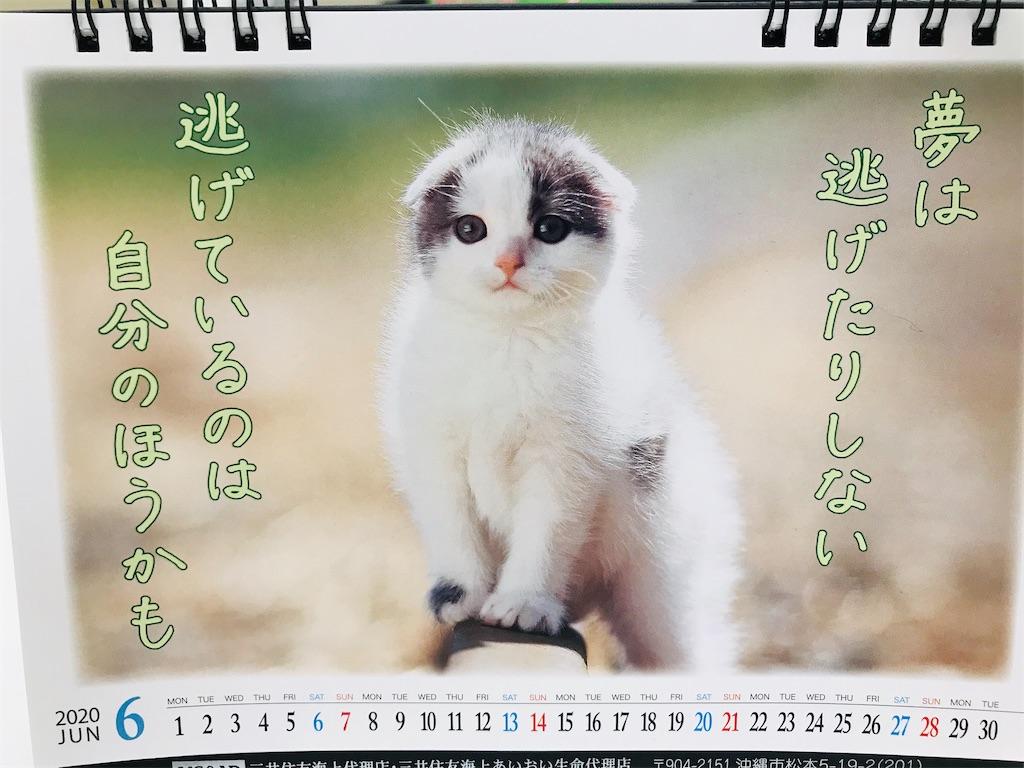 f:id:yaaninju-yui35:20200630170307j:image