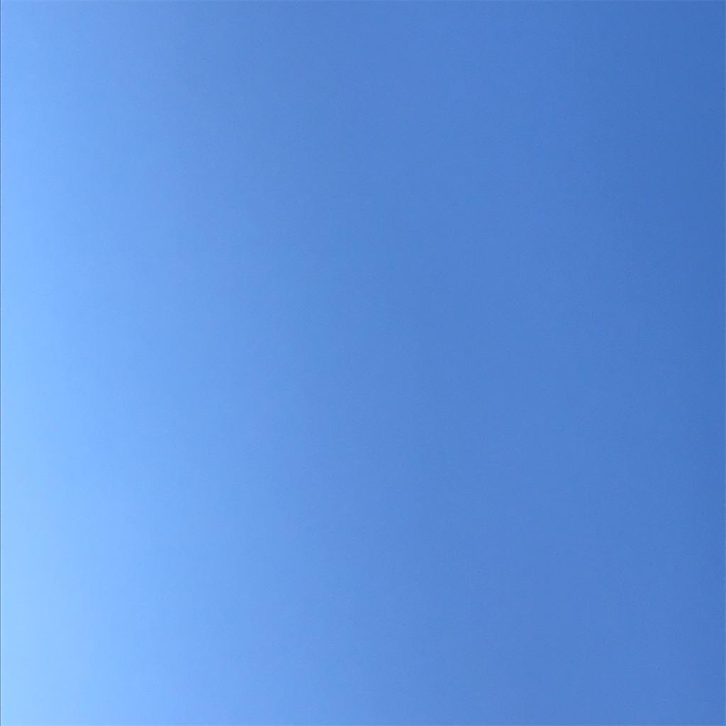 f:id:yaaninju-yui35:20201128210526j:image