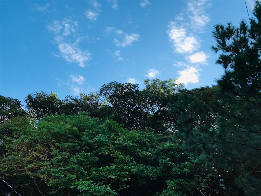 f:id:yaaninju-yui35:20201215190843j:image