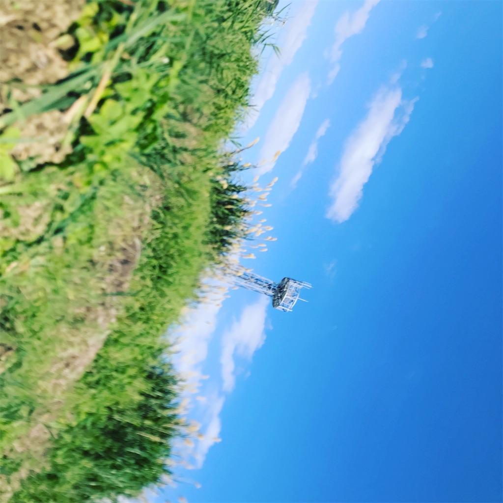f:id:yaaninju-yui35:20210113164946j:image