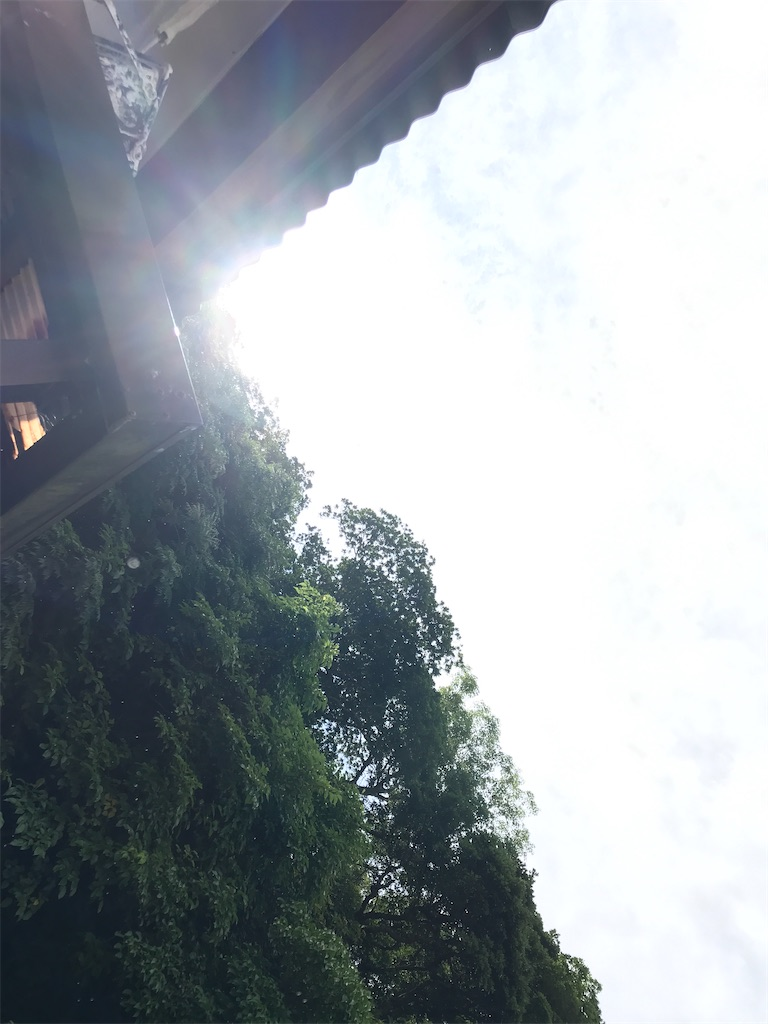 f:id:yaaninju-yui35:20210528164222j:image