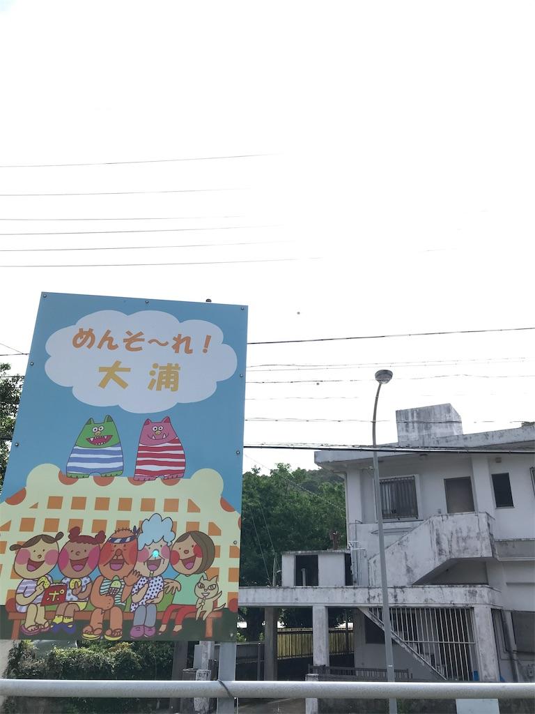 f:id:yaaninju-yui35:20210601200717j:image