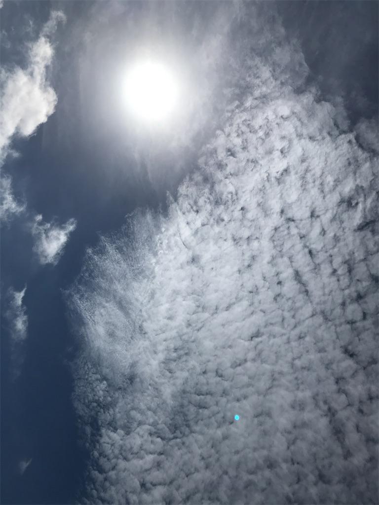 f:id:yaaninju-yui35:20210601200722j:image