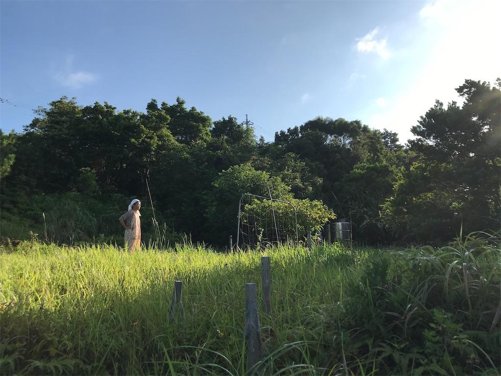 f:id:yaaninju-yui35:20210731175817j:image