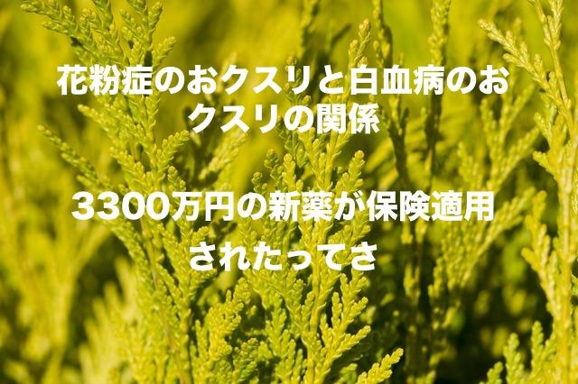f:id:yacchi10034:20190824203020j:plain