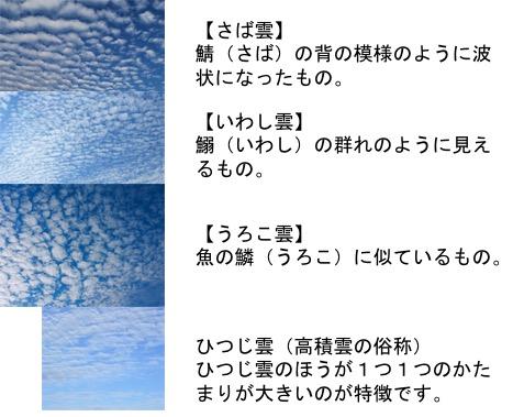 f:id:yachikusakusaki:20161101221003j:plain