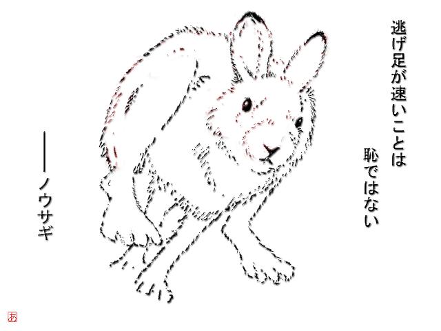 f:id:yachikusakusaki:20161104222946p:plain