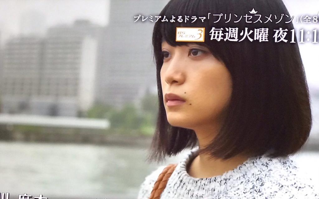 f:id:yachikusakusaki:20161201014235j:plain