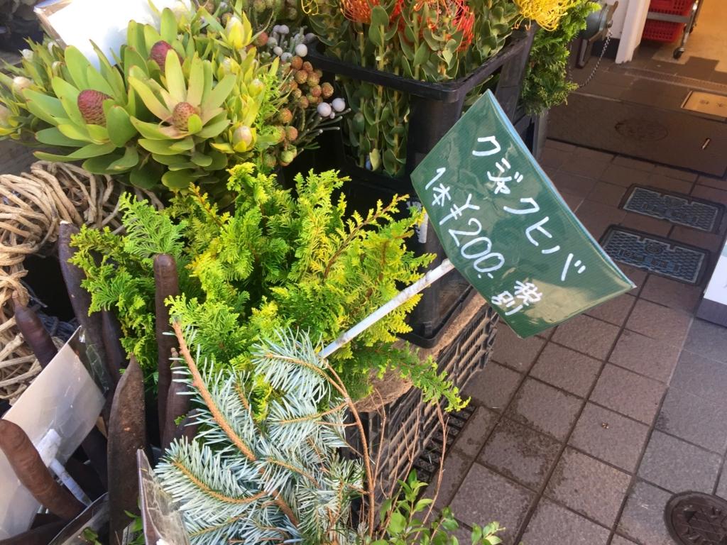 f:id:yachikusakusaki:20161206210442j:plain