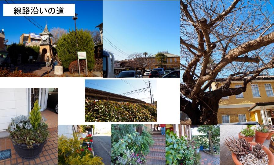 f:id:yachikusakusaki:20170105223957j:plain