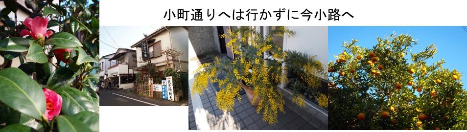 f:id:yachikusakusaki:20170105224146j:plain