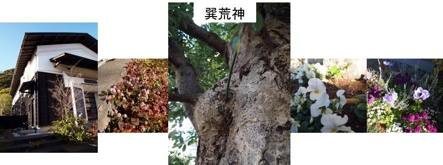 f:id:yachikusakusaki:20170105224232j:plain