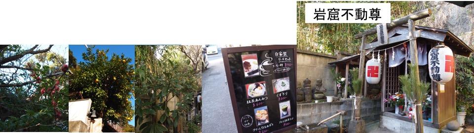 f:id:yachikusakusaki:20170105225439j:plain