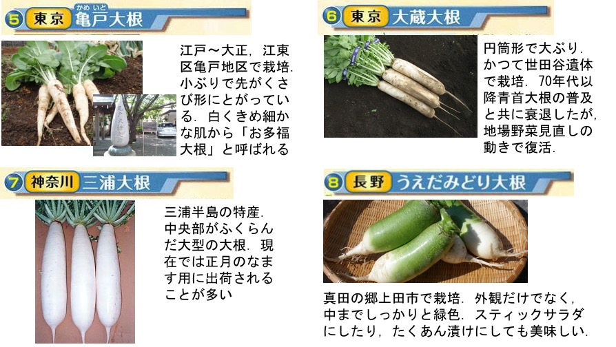 f:id:yachikusakusaki:20170123234527j:plain