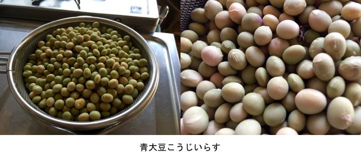 f:id:yachikusakusaki:20170130204144j:plain