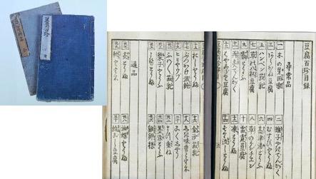 f:id:yachikusakusaki:20170210001545j:plain