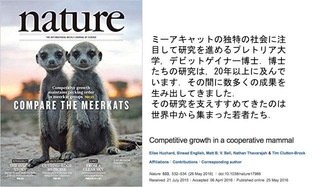 f:id:yachikusakusaki:20170308003224j:plain