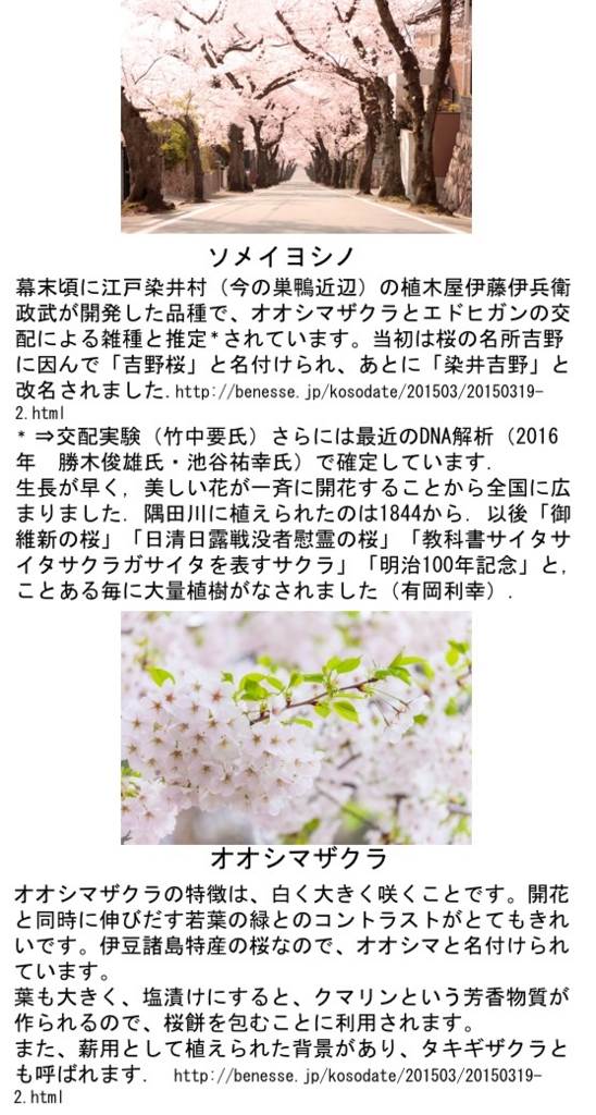 f:id:yachikusakusaki:20170329095226j:plain