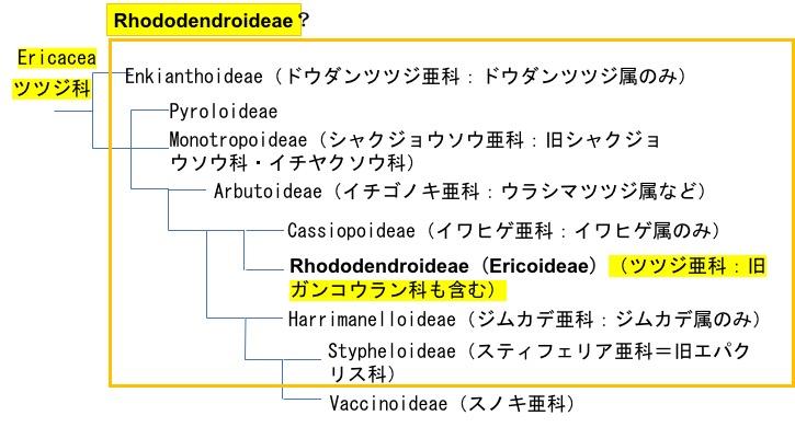 f:id:yachikusakusaki:20170329233051j:plain