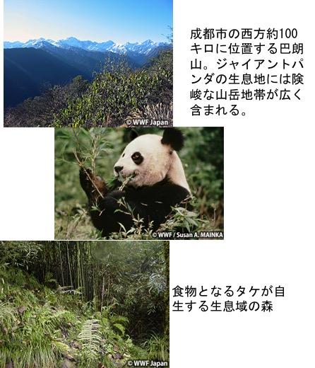 f:id:yachikusakusaki:20170405014341j:plain