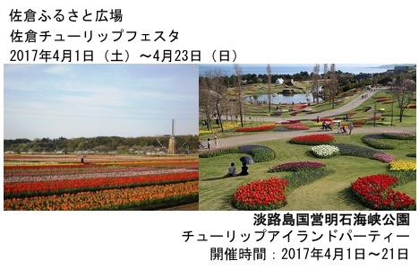 f:id:yachikusakusaki:20170405223910j:plain