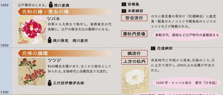 f:id:yachikusakusaki:20170420005439j:plain
