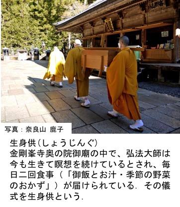 f:id:yachikusakusaki:20170503013828j:plain