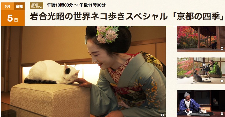 f:id:yachikusakusaki:20170507002513j:plain