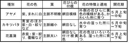 f:id:yachikusakusaki:20170516182357j:plain