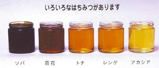 f:id:yachikusakusaki:20170528232747j:plain