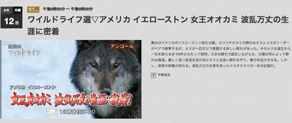 f:id:yachikusakusaki:20170616215200j:plain