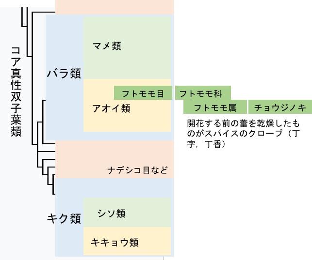 f:id:yachikusakusaki:20170622004431j:plain