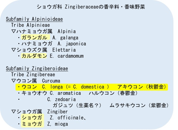 f:id:yachikusakusaki:20170714231306j:plain