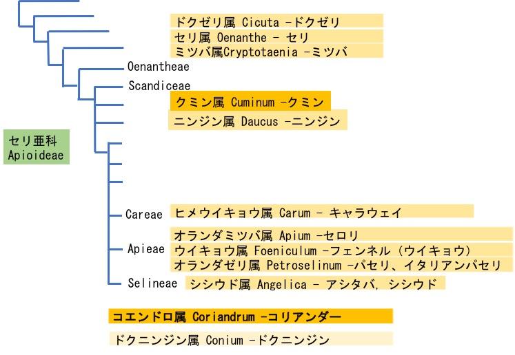 f:id:yachikusakusaki:20170716034213j:plain