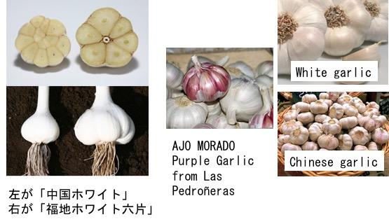 f:id:yachikusakusaki:20170803011836j:plain