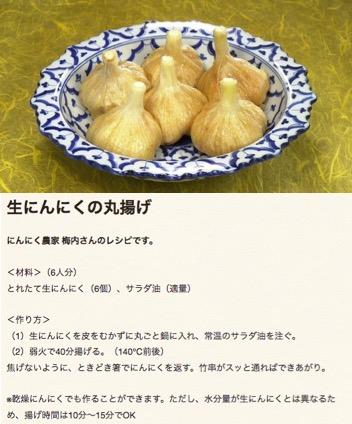 f:id:yachikusakusaki:20170803015852j:plain