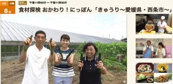 f:id:yachikusakusaki:20170811004138j:plain