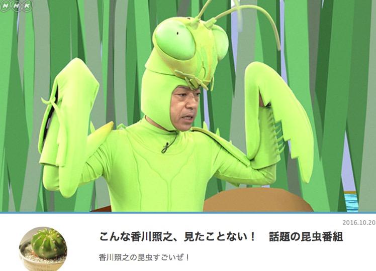 f:id:yachikusakusaki:20170814012341j:plain