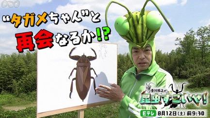 f:id:yachikusakusaki:20170814012451j:plain