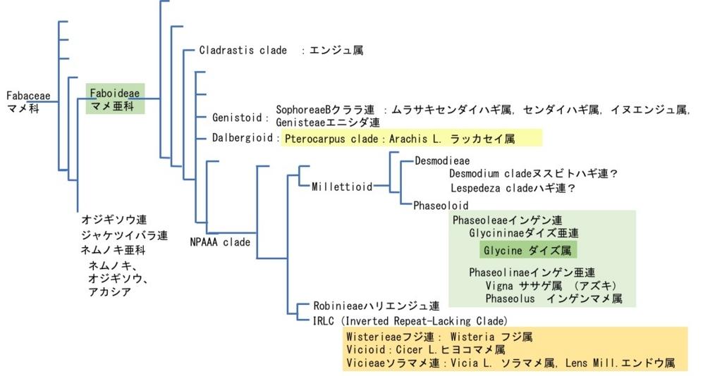 f:id:yachikusakusaki:20170817022523j:plain