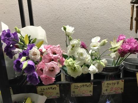 f:id:yachikusakusaki:20170821002545j:plain