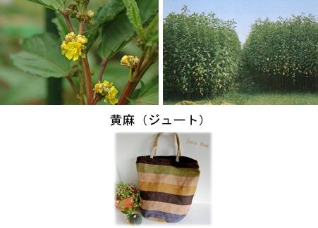 f:id:yachikusakusaki:20170829000645j:plain