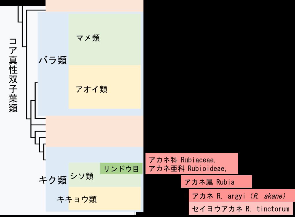 f:id:yachikusakusaki:20170830002245p:plain