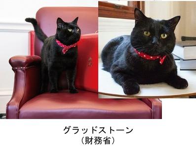 f:id:yachikusakusaki:20170902004126j:plain